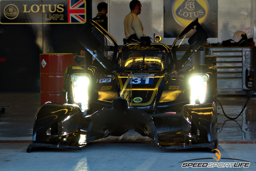 wec-alms-by-jennifer-stamps-0691