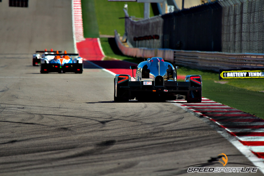 wec-alms-by-jennifer-stamps-9786