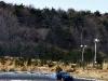 Mustang Drifts Japan 30.JPG